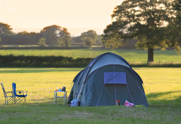 Book your Camping for  Bolesworth International 2018